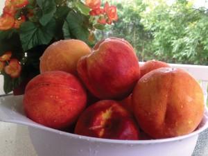 peaches_13881bc