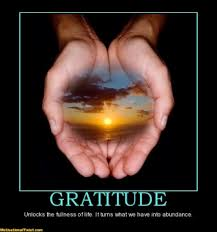 Take the 30 days of gratitude challenge